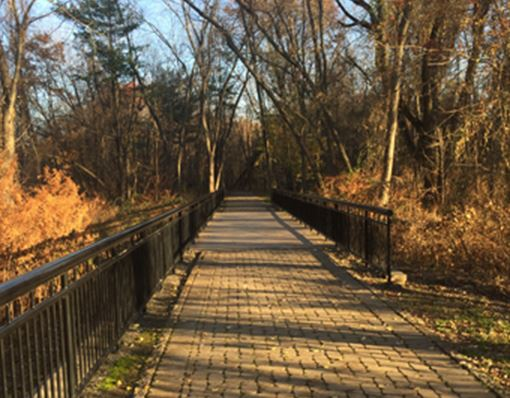 Westvale Walkway during the fall